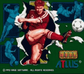 Play World Soccer 94